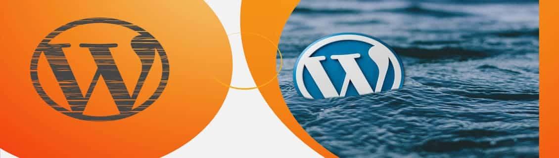 gaat update WordPress voor problemen zorgen